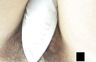 sex გეი ცხენი სექსი კლასის დედა ორსული